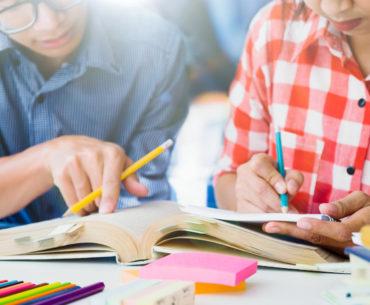 Gehirn-gerecht lernen Birkenbihl und Linguajet