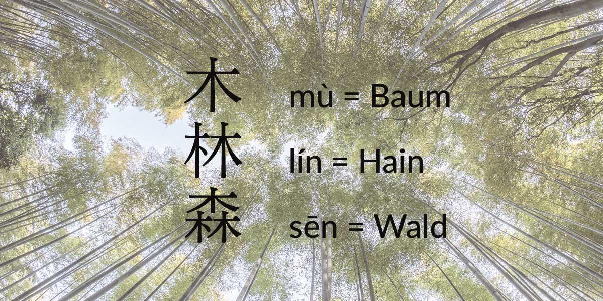 Baum-Wald Chinesisch lernen einfach